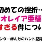 【MHW】★7「リオレイア亜種」に挑むも勝てる気がしない ソロプレイ